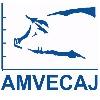 Amvecaj XXII
