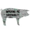International Conference on Pig Survivability - Aplazado