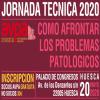 Jornada Tecnica AVPA 2020 - Pasa a formato online