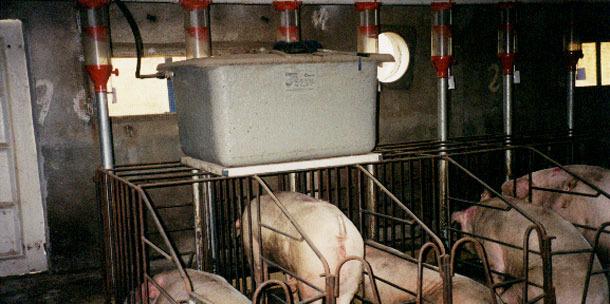 Una alternativa es poner un depósito, a modo de cisterna, encima de cada línea de gestación