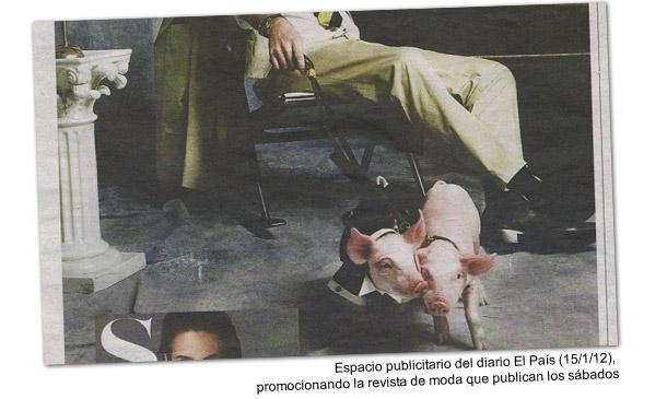 Cerdos vestidos