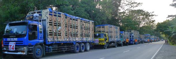 Parada para revisión de los animales y reaprovisionar los camiones a medio camino de Tagkawayan, Quezon.