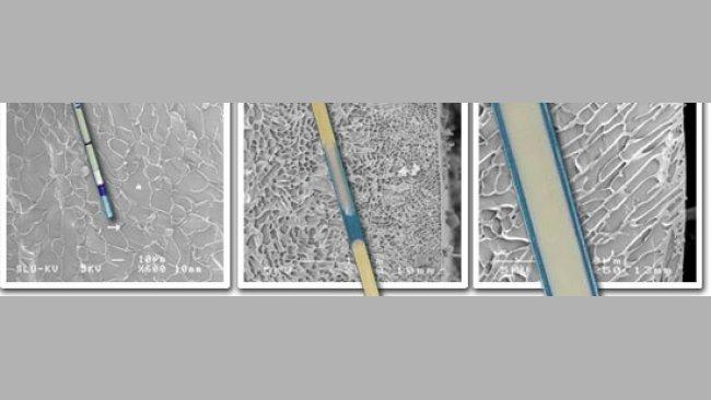 20101015-pajuelas-semen_congelado