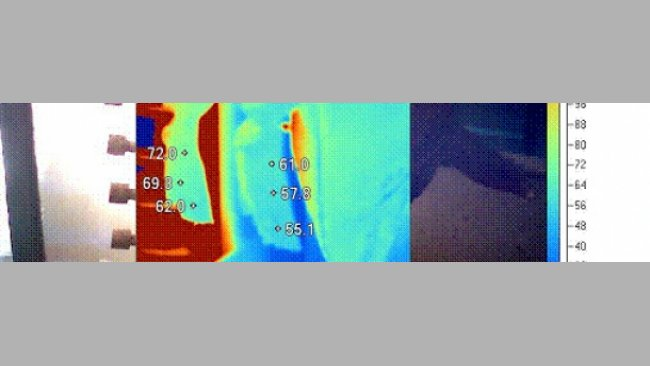 Puede utilizarse una cámara termográfica para la optimización del chamuscado, al asegurar un calentamiento adecuado de toda la superfície de la canal, especialmente en parte anterior, donde la carga de Salmonella es mayor.