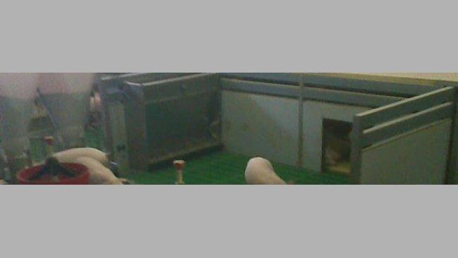 Nidos caseros para lechones