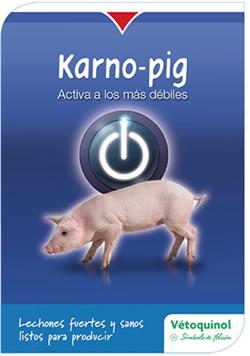 Karno-pig que estimula el metabolismo y proporciona las vitaminas y minerales para el óptimo desarrollo del lechón