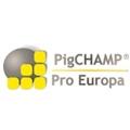PigCHAMP
