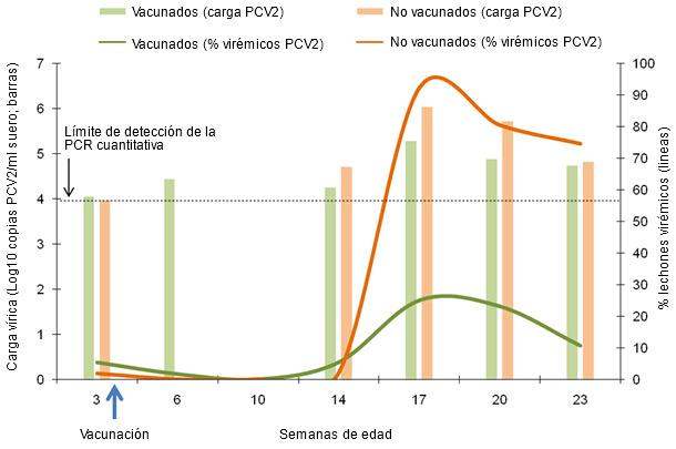 Comparativa de la dinámica del porcentaje de lechones virémicos y carga vírica media en los lechones virémicos