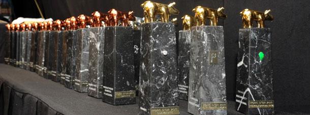 Estatuillas Premios Porc dOr