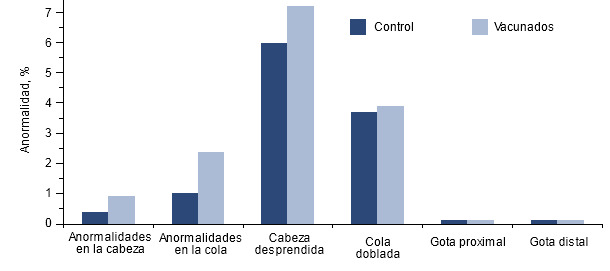 Efecto de la vacunación de machos positivos a PCV2 sobre la motilidad espermática