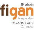 FIGAN 2013