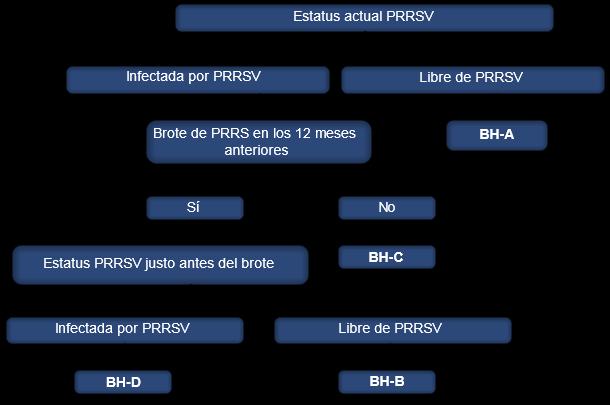 Sistema de clasificación del virus PRRS en granjas de cerdas