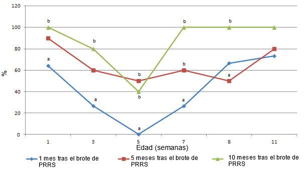 Proporción de seropositivos mediante IPMA (ensayo de inmunoperoxidasa en monocapa) a una dilución de 1:500 en los meses 1, 5 y 10 tras el brote de PRRS, en lechones de 1, 3, 5, 7, 9 y 11 semanas de vida. Las letras diferentes (a,b) indican diferencias significativas entre la proporción de cerdos seropositivos a 1, 3, 5, 7 y 9 semanas de vida (p < 0,05).
