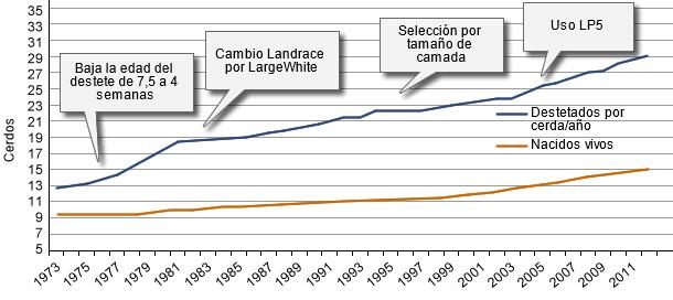 Desarrollo del nivel productivo de las granjas danesas en los últimos 40 años