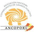 Ancoporc