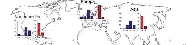 Prevalencias geográficas de diferentes cepas de TTSuV