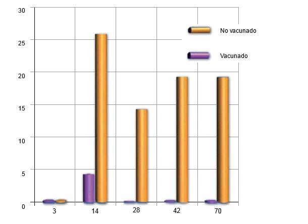 Reaislamento de Pasteurella multocida en lechones de cerdas vacunadas