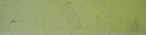 El papel de fumar pegado a la pared indica un secado incompleto de la sala