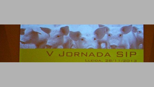 V Jornada SIP