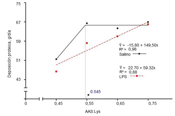 Requerimientos de digestibilidad ileal estandarizada para aminoácidos sulfurados determinados en cerdos de engorde a los que se había inyectado intramuscularmente una solución salina o lipopolisacárido (LPS) de E. coli