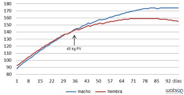 Deposición proteica (g/día) de machos enteros y hembras de la línea genética A