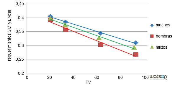 Requerimientos de lisina ileal estandarizada por Mcal para la línea genética A