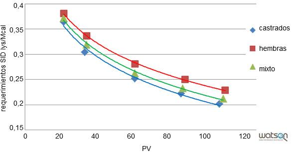 Requerimientos de lisina ileal estandarizada por Mcal para la línea genética B