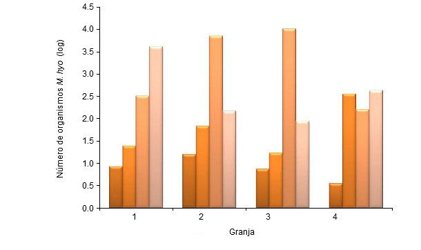 Número de organismos de M. hyopneumoniae