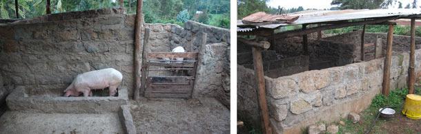Alojamientos mejorados en Kiambu, Kenia