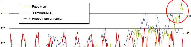 Peso vivo medio a matadero en EEUU vs. temperatura media semanal en Des Moines, Iowa y precio recibido por el productor. Fuentes: USDA, AMS market news service y la universidad de Dayton