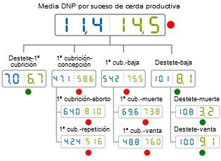 comparativa del año 2012 de los DNP por suceso de cerda.Media de base de datos (azul) vs media de la explotación  analizada (verde)