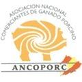 ancoporc.gif