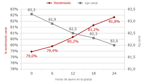 Evolución del peso y rendimiento canal según horas de ayuno en granja, con 12 horas de transporte y estabulación pre sacrificio