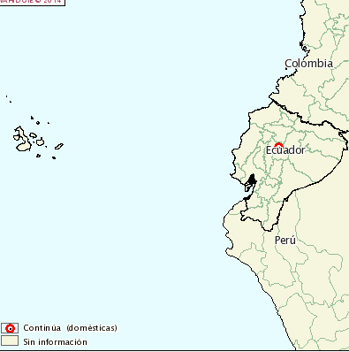 ecuador coronavirus