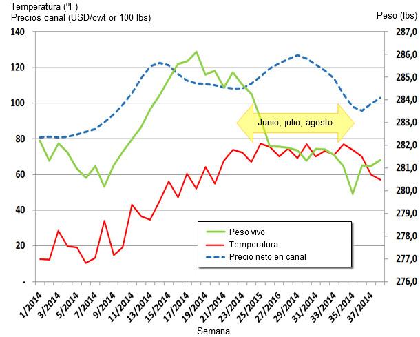 Actualización de los valores semanales de peso vivo medio, precio canal y temperatura en EEUU.
