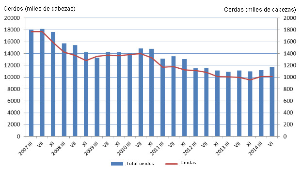 censo porcino polonia