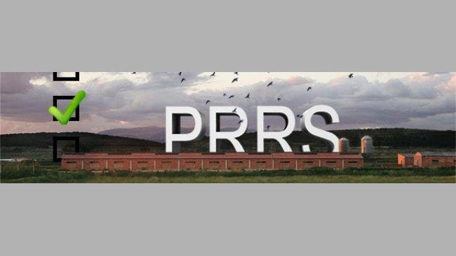 PRRS survey