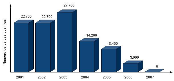 Evolución del número de cerdas positivas a PRRSv