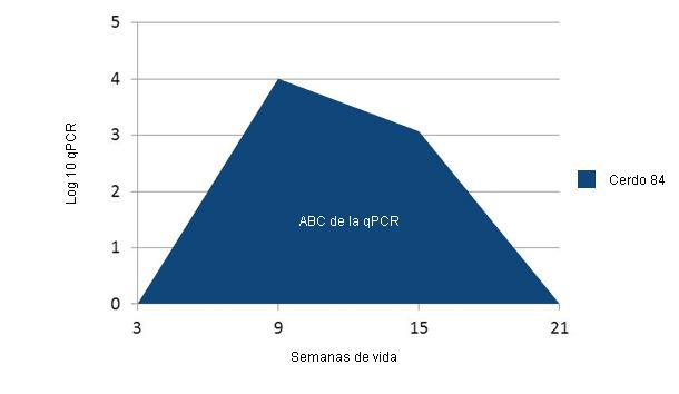 Ejemplo del cálculo de la ABC en las qPCR frente a PCV2 en cada individuo