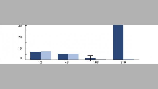 Supervivencia intracelular de H parasuis en los macrófagos alveolares porcinos recogidos de cerdos previamente infectados con PRRSv