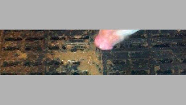 Diarreas post-destete en lechones