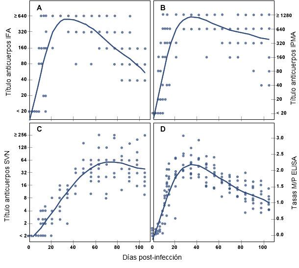 Respuesta de anticuerpos específicos frente a PRRSV en cerdos conforme pasa el tiempo tras la infección experimental