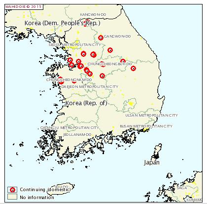 fmd korea