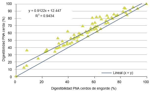 Relación entre la digestibilidad calculada de polisacáridos no amiláceos (NSP) para cerdas y cerdos de engorde de acuerdo con la base de datos de INRA