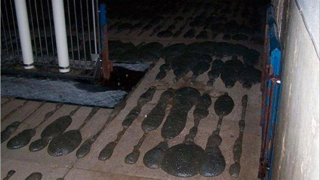 Espuma sobresaliendo del suelo de slat