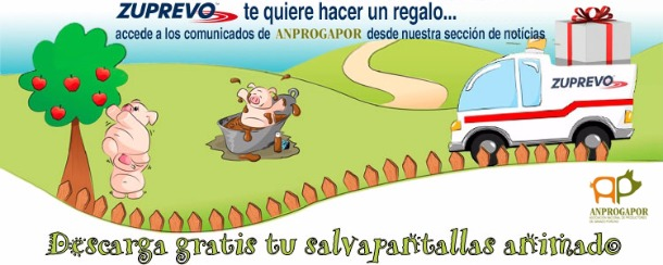 Salvapantallas-Anprogapor.jpg