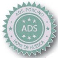 ADS Huesca.jpg