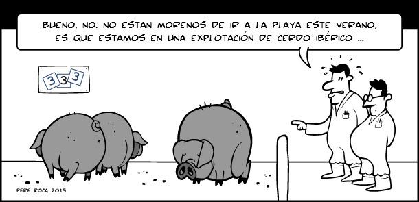 Cerdos morenos