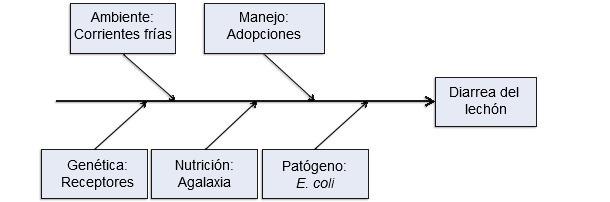 Modelo de cinco factores productivos como causantes de enfermedad.