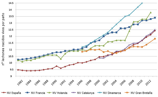 Evolución del número de lechones nacidos por parto en diversos países